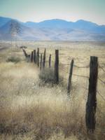 Big Bend Fence