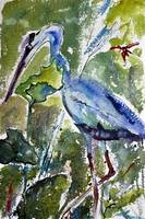 Blue Heron Stalking Watercolor and Ink