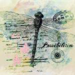 """""""possibilities_pe"""" by lizmix"""