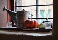 Adobe Window Autumn Still Life C1