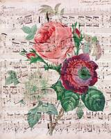 Roses and Music