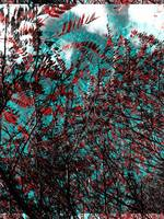 Creative Sumac Tree Abstract Art