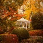 """""""Autumn Gazebo"""" by JessicaJenney"""