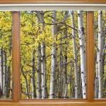 """Autumn Aspen Forest Classic Wood Window View"" by lightningman"