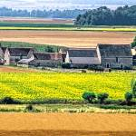 """Loire Valley Farm"" by mjphoto-graphics"