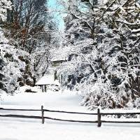 Winter Wonderland Art Prints & Posters by Susan Savad