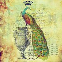 Royal vintage peacock Art Prints & Posters by Elizabeth Mix
