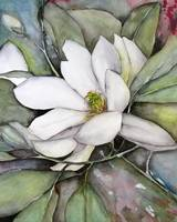 White Magnolia Watercolor Painting Flower Art