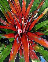 Heart of Flame Cactus Painting Artwork Art