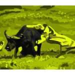 """In The Bush"" by joncalvert"