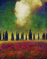row of cypress with poppies