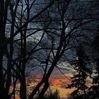 sunset 11-24-2014 Art Prints & Posters by John Giroux