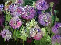 Allium Modern Decorative Painting