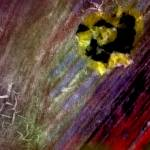 """pink yellow orange red green photo painting"" by jnanian"