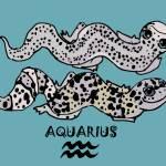 """Zodiac Leopard Geckos -- Aquarius"" by EmilyFilos"