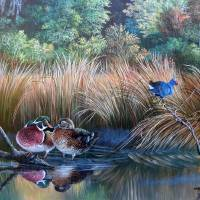 Wood ducks On Golden Pond Art Prints & Posters by Daniel Butler