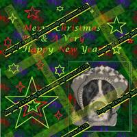 Merry Christmas & Happy New Year Rio - Copy