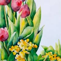 Pink Tulips Art Prints & Posters by Chris Ambrose