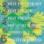 """""""Life is an Echo"""" by DebbieDeWitt"""