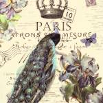 """paris crown blue peacock lt"" by lizmix"