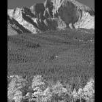 """Longs Peak View Black and White Poster"" by lightningman"