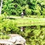 """Bicycling by the Lake"" by susansartgallery"
