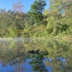 """Shawnee Morn"" by GlendaBorchelt"