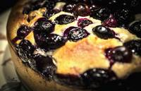 Food Macro Blueberry Muffin Cake