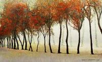 row of trees in fog