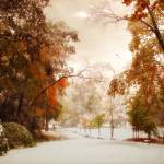 """""""Autumn Meets Winter"""" by JessicaJenney"""