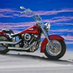 """2000 Harley Davidson"