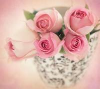 Beautiful Pink bouquet of roses