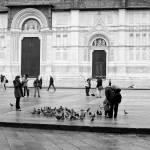 """""""Piazza Maggiore"""" by raetucker"""