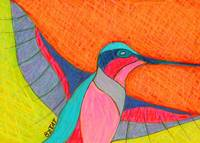 Humming-bird-drawing-contemporary-BZTAT