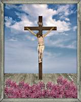 Jesus on the Cross Illustration