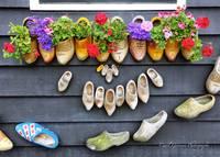 Happy Wooden Shoes by Carol Groenen