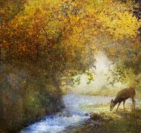 deer by a woodland brook