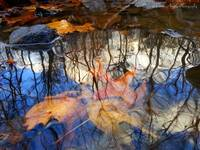 Autumn Reflections 3