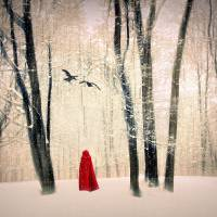 A Winters Tale Art Prints & Posters by Jessica Jenney