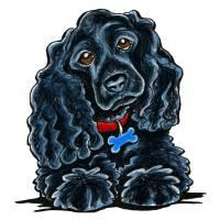 Cocker Spaniel Fitz Art Prints & Posters by Off-Leash Art™