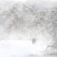 Winter Stroll Art Prints & Posters by Igor Zenin