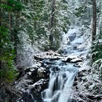 Winter at Paradise River's Washington Cascades Art Prints & Posters by JOHN CHAO