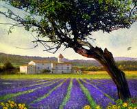 bent tree and villa with lavender