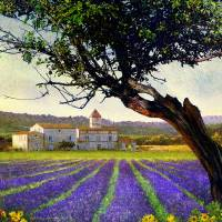 bent tree and villa with lavender Art Prints & Posters by r christopher vest