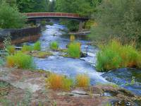 The Flow Of The Deschutes River