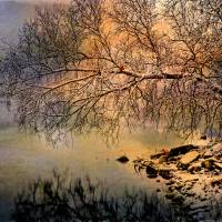 Winter Lake Reflections Art Prints & Posters by Pamela Phelps