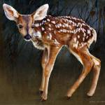 """wobbly baby fawn deer portrait"" by rchristophervest"