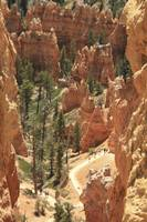 Into Bryce Canyon