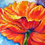 """POPPY SPLASH"" by MBaldwinFineArt2006"