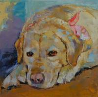 Yellow Labrador Retriever